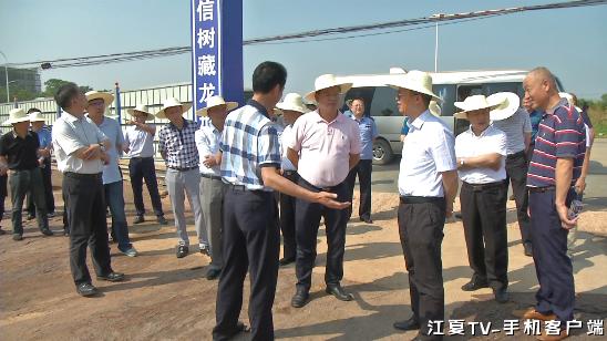 王清华率队现场办公   加快推进全区重大项目建设